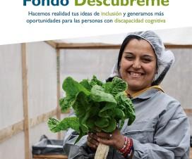 Afiche Fondo Concurso 2016 - Fuente: Fundación Descúbreme