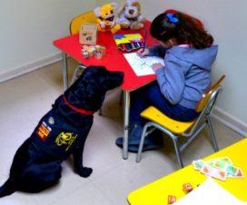 Perro de asistencia junto a una niña - Fuente: Fundación Ciudad del Niño