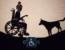 Captura de pantalla de cortometraje Como pez en el agua, aparece la sombra de una persona usuaria de silla de ruedas frente a un perro.